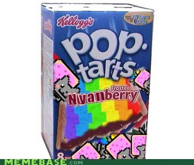 breakfast,delicious,frosted,Nyan Cat,nyanberry,poptarts