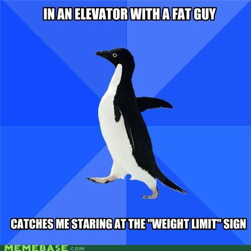 elevator fat limit socially awkward penguin stairs weight work - 4866762496