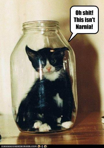 Oh shit! This isn't Narnia!
