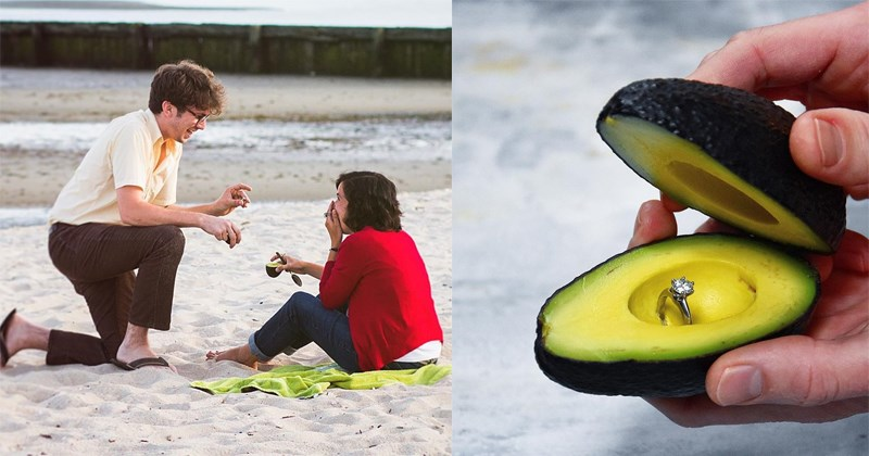 Funny tweets about avocado proposals, avocados, proposals, marriage, relationships, engagment.