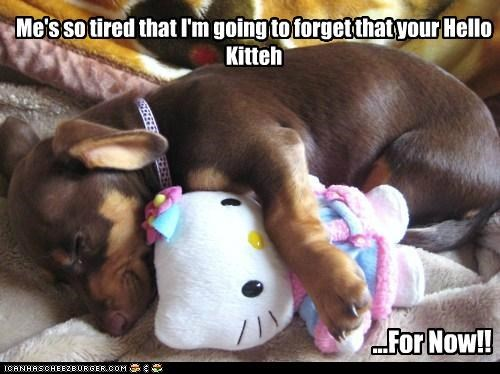 Me's so tired that I'm going to forget that your Hello Kitteh ...For Now!!