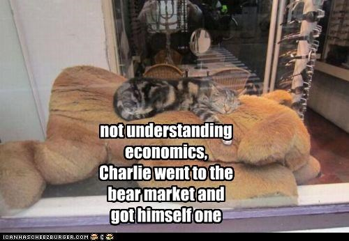 bear,bear market,caption,captioned,cat,Economics,market,misunderstanding,not,pun,understanding
