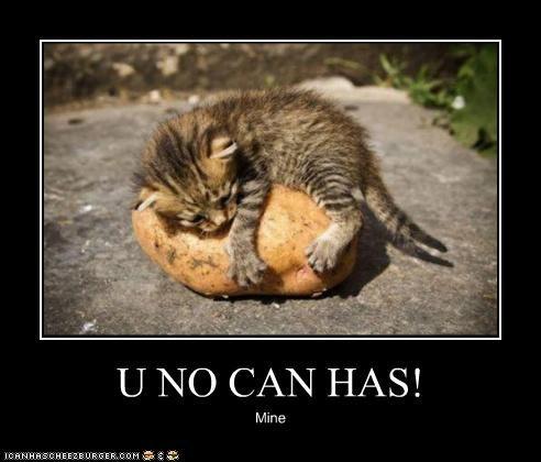 U NO CAN HAS! Mine