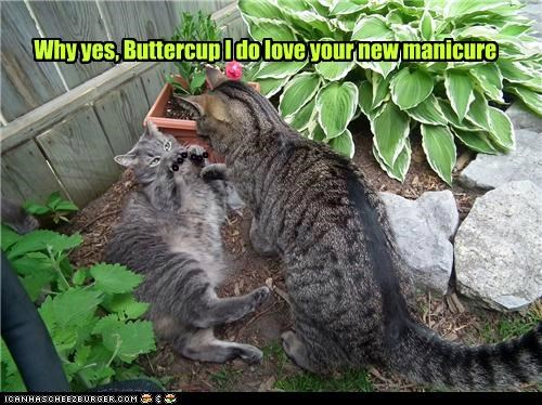 Why yes, Buttercup I do love your new manicure - - - - - -