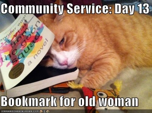 13 bookmark caption captioned cat community community service day old service tabby woman