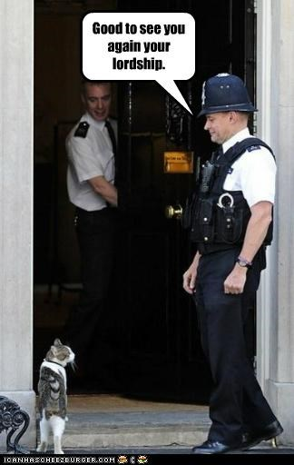 britain Cats downing street cat england Hall of Fame political pictures - 4871200000