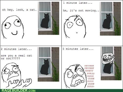 Cats Rage Comics real still weird
