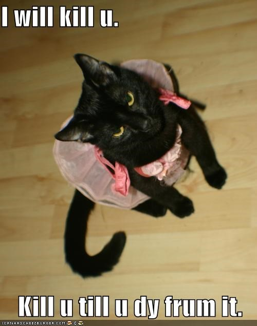 angry black dress lolcats murder pink - 487134976