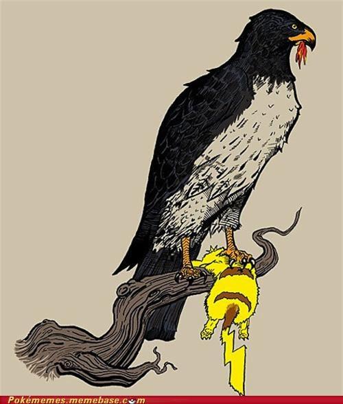 eagle food chain pikachu Predator - 4871513088