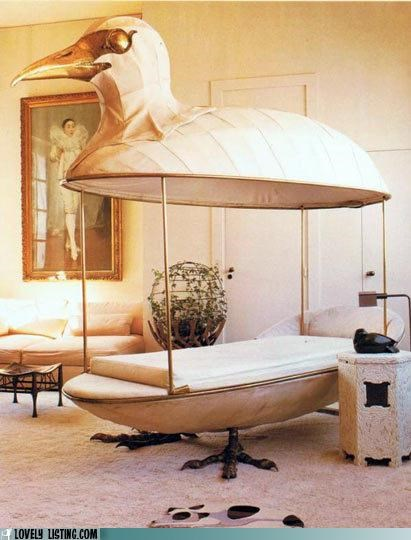 bed,bird,canopy,feet