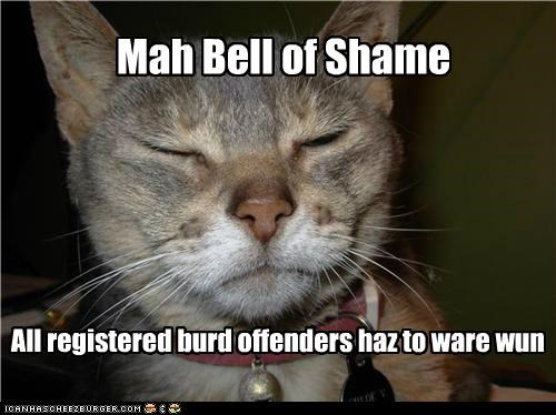bell bird caption captioned cat offenders registered required shame wear wearing - 4872216320