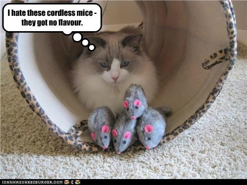 I hate these cordless mice - they got no flavour.