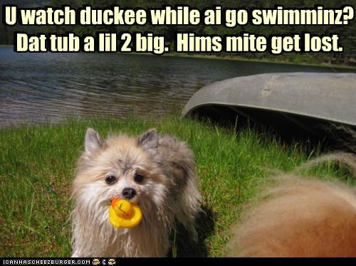 U watch duckee while ai go swimminz? Dat tub a lil 2 big. Hims mite get lost. U watch duckee while ai go swimminz? Dat tub a lil 2 big. Hims mite get lost.