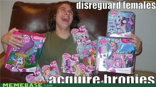 Bronies,females,Memes,sexuality,toys