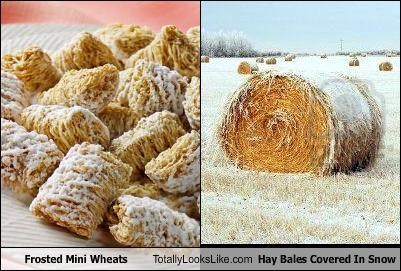 food,frosted mini wheats,hay,hay bales,snow