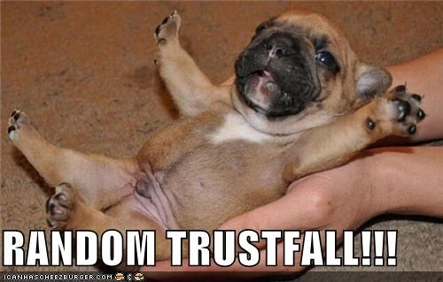 best of the week,fall,Hall of Fame,pug,puppy,random,trust,trust fall