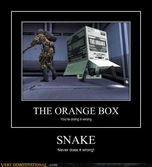 hilarious orange box snake wrong - 4875620608
