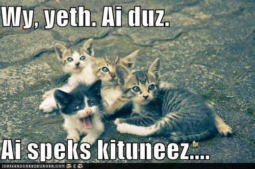 Yeth Cat