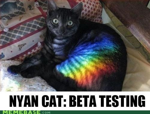 animemes beta cat IRL Nyan Cat rainbow - 4876654848