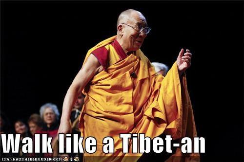 Dalai Lama political pictures tibet - 4876926976