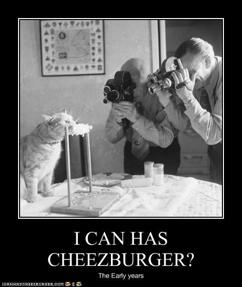 Cheezburger Image 4877191936