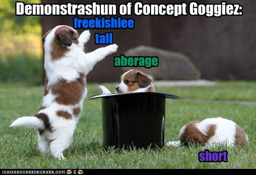 Demonstrashun of Concept Goggiez: short aberage freekishlee tall