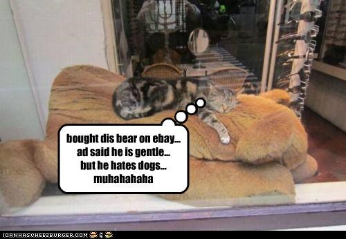 Cheezburger Image 4878656512