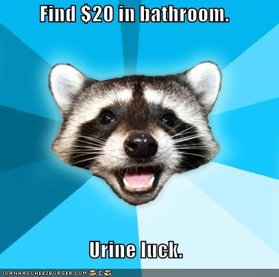 bucks jokes Lame Pun Coon toilet urine - 4878881280