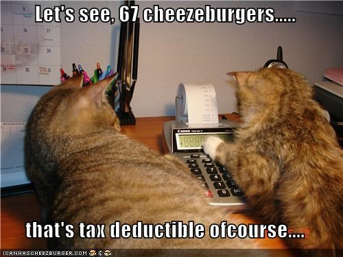 Cheezburger Image 4879216640