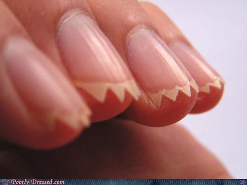 fingernails hand sharp - 4879346176