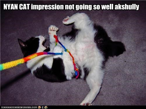 actually caption captioned cat impression meme not so good Nyan Cat rainbow string stuck - 4879525888