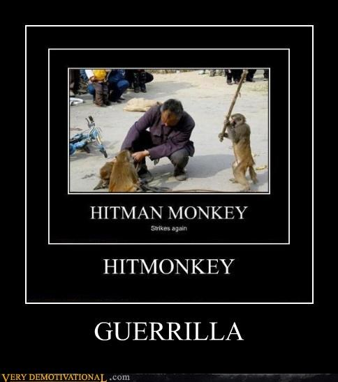 ape guerrilla monkey Pure Awesome - 4879956736