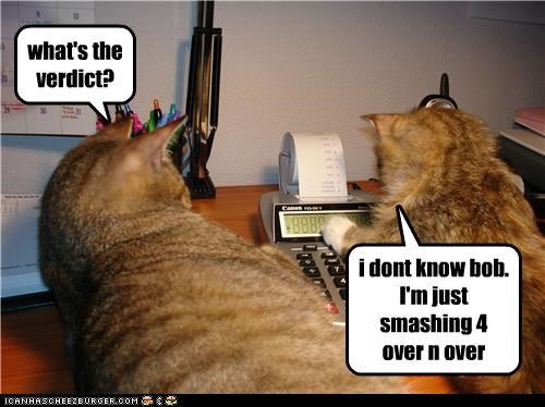 calculator caption captioned cat Cats dont-know four over pressing question repeatedly repetition smashing verdict