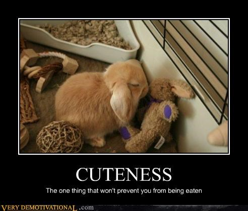CUTENESS The one thing that won't prevent you from being eaten