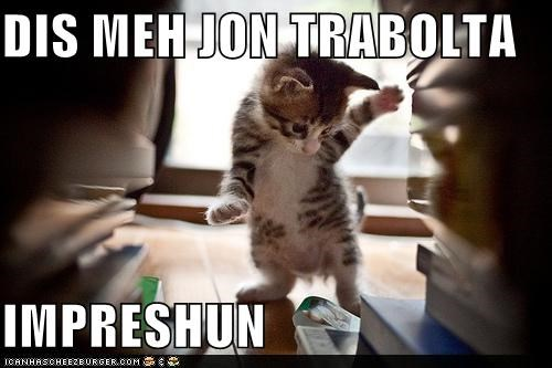 caption captioned cat dance dancing impression john travolta kitten