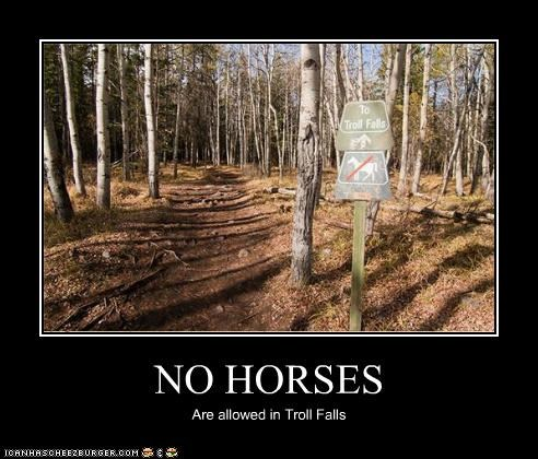 NO HORSES Are allowed in Troll Falls