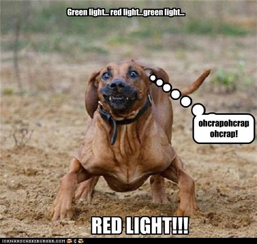 Green light... red light...green light... RED LIGHT!!! ohcrapohcrapohcrap!