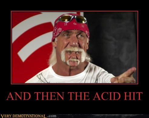 acid,hilarious,Hulk Hogan,weird,wtf