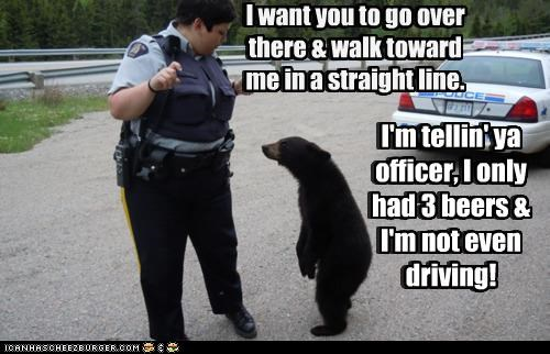 I'm tellin' ya officer, I only had 3 beers & I'm not even driving! I want you to go over there & walk toward me in a straight line. I want you to go over there & walk toward me in a straight line. I'm tellin' ya officer, I only had 3 beers & I'm not even driving!