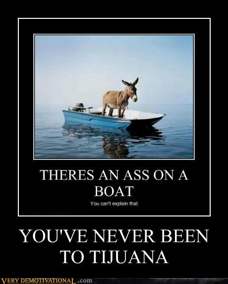 boat donkey hilarious tijuana - 4883295232