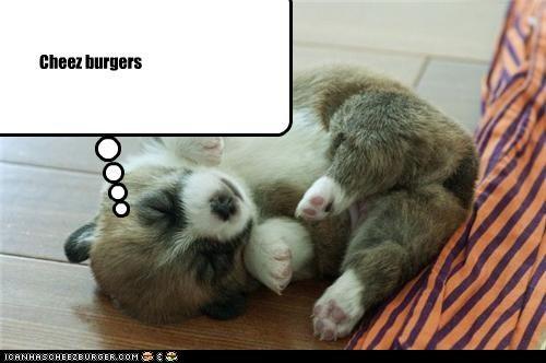 Cheez burgers