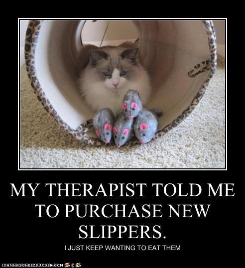 MY THERAPIST TOLD ME TO PURCHASE NEW SLIPPERS. I JUST KEEP WANTING TO EAT THEM