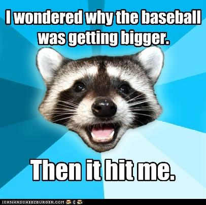 baseball bigger hit Lame Pun Coon perspective size sports - 4884399616