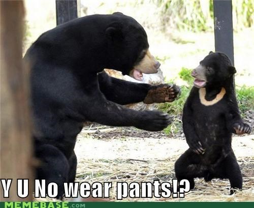 bear clothes IRL pants sunbear Y U No Guy - 4884678656