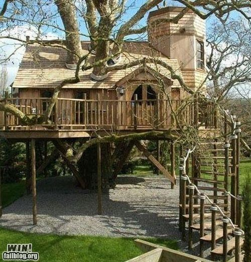 build,DIY,literal,tree house,trees