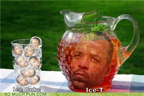 double meaning,ice,ice cube,ice cubes,iced tea,ice t,literalism