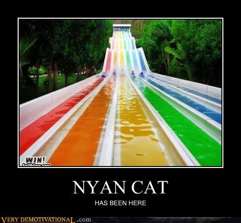 Memes,Nyan Cat,Pure Awesome,water silde