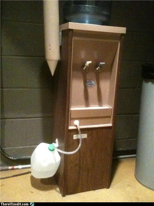 dual use,milk jug,water,water cooler