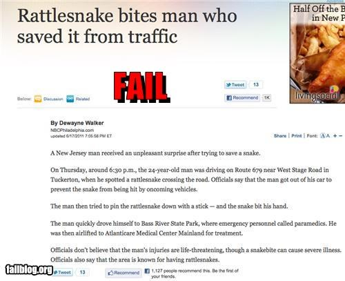 animals failboat g rated karma Probably bad News snakes ungrateful - 4887638784