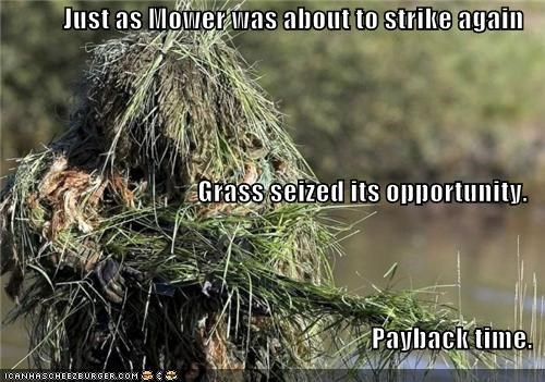 army,grass,lawn mower,political pictures
